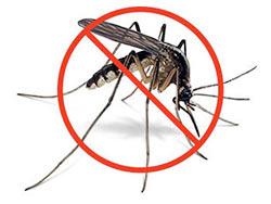 Gaziantep Böcek İlaçlama Servisi